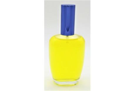 Frasco rellenable 100 ml con pulverizador incluido Azul